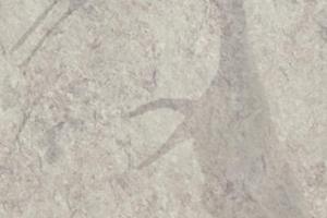 d-1209-bz-neolit-szary-1_decor_d